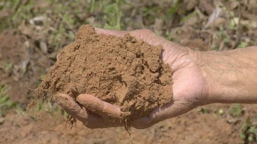 choosing-and-gathering-a-silt-soil